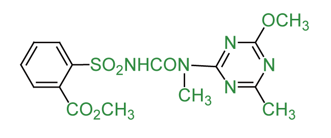 Tribenuron-methyl,苯磺隆